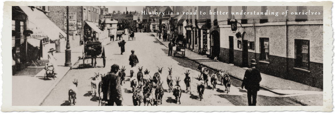 Kiwitrees, the best place to host your family tree » Kiwitrees